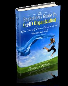 brandi roberts self organization